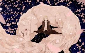 Картинка аниме, лепестки, арт, персонажи, natsume yuujinchou, Тетрадь дружбы Натсуме