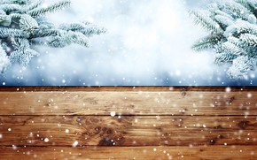 Картинка зима, иней, снег, ветки, елка, мороз, wood, winter, snow, fir tree