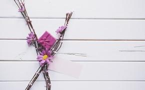 Картинка цветы, ветки, подарок, Праздник, хризантемы
