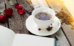 Обои книга, Чай, лепестки