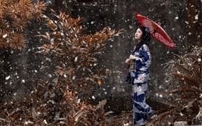 Обои кимоно, зонт, ветки, Снег, девушка, вгляд