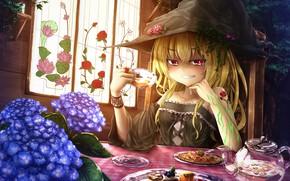 Картинка взгляд, девушка, аниме, Тохо, Тоухоу