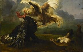 Картинка животные, масло, картина, холст, Драка Птиц