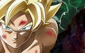 Картинка blood, game, alien, anime, blonde, martial artist, manga, Son Goku, Dragon Ball, strong, Goku, Saiyan, …