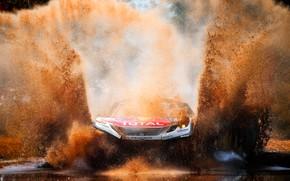 Обои Вода, Авто, Спорт, Машина, Скорость, Грязь, Лужа, Peugeot, Брызги, Фары, Red Bull, Rally, Dakar, Дакар, ...