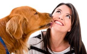 Картинка девушка, радость, настроение, собака, брюнетка, белый фон, рыжая, ретривер