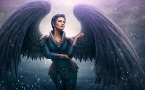 Обои крылья, девушка, ангел