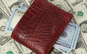 Картинка money, wallet, crocodile skin