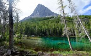 Картинка Озеро, Гора, Еловый лес