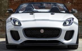 Картинка белый, стена, Jaguar, кирпичи, решётка, бампер, передок, V8, 575 л.с., 5.0 л., F-Type Project 7