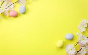 Картинка цветы, фон, яйца, весна, Пасха, blossom, flowers, spring, Easter, eggs, decoration, Happy, tender