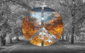 Картинка Дорога, Осень, Лес, Photoshop, Фотошоп, Road, Forest, Atumn, Polyscape, BlackandWhite