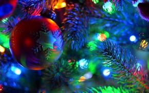 Картинка украшения, иголки, ветки, огни, праздник, елка, шар, гирлянда, боке