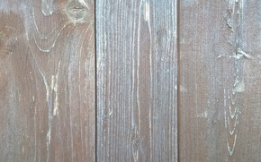 Картинка wallpaper, wall, wood, texture, background, board, wooden wall, wooden board