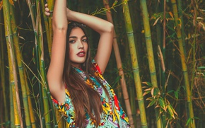Картинка поза, модель, руки, бамбук, Paula Riba
