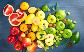 Обои зелёные, виноград, яблоки, слива, грейпфруты, лимоны, фрукты, авокадо, красные
