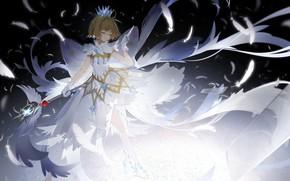 Картинка девушка, аниме, перья, арт, Card Captor Sakura