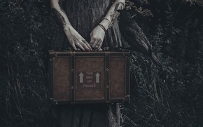 Картинка руки, чемодан, ворона, Lucz Anne fowler