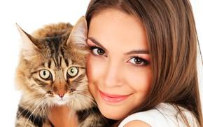 Картинка кошка, взгляд, девушка, лицо, улыбка, макияж, мордочка, прическа, белый фон, шатенка