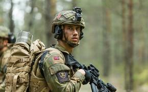 Картинка оружие, солдат, Norwegian Army