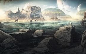 Картинка море, небо, облака, камни, скалы, планета, жирафы, exodus