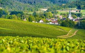 Картинка горы, город, France, виноградники, Champagne