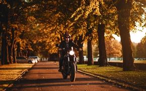 Обои moto, Cafe Racer, природа аллея, погожее утро, дорога скорость, боке, custom, размытость, wallpaper., мотоцикл, байкер, ...