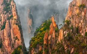 Картинка деревья, горы, туман, скалы, Китай, дымка, сосны, гранитные скалы, Хуаншань, 黄山, провинция Аньхой, жёлтые горы