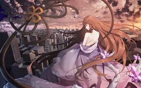 Картинка девушка, спина, аниме, forever 7th capital