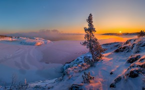 Картинка зима, снег, закат, озеро, дерево, лёд, сосна, Ладожское озеро, Ленинградская область