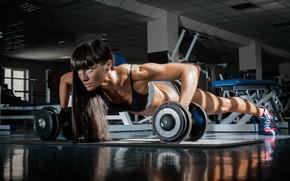 Картинка fitness, gym, dumbells, Pushups