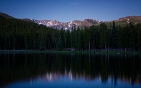Картинка лес, деревья, горы, отражение, вечер, водоем
