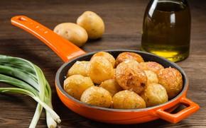 Картинка масло, лук, картофель