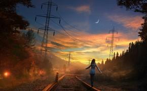 Обои арт, дорога, луна, вечер, девушка, железная дорога, небо, закат, рельсы, лес, кот