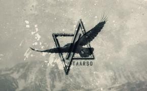 Картинка music, dark, wallpaper, bird, crow, raven, electro, progressive, perfect, darkness, edm, producer, taarso