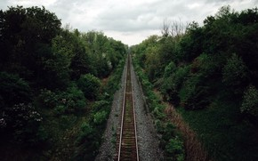 Картинка лес, природа, железная дорога