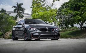 Картинка BMW, Gray, Sight, LED, F83