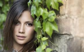 Картинка взгляд, лицо, волосы, милашка, Chiara