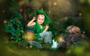 Картинка животные, природа, камень, сказка, мальчик, фонари, костюм, кролики, ребёнок