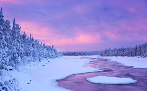 Картинка река, Небо, Природа, Зима, Снег, Ель, Финляндия, Лапландия