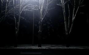 Картинка дорога, снег, ночь, фонарь
