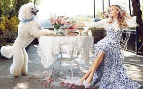 Обои белый, цветы, улыбка, еда, собака, макияж, сад, платье, прическа, блондинка, туфли, сидит, пудель, лепестки роз, ...