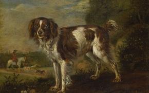 Картинка животные, дерево, масло, собака, картина, Паулюс Поттер, Спаниель
