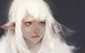 Картинка грусть, глаза, Keunju Kim, rabbiteyes, snowelf by, white hair silver eyes