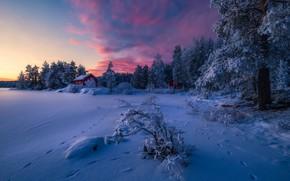 Обои зима, лес, снег, природа, домик