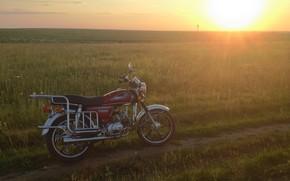 Картинка поле, лето, солнце, пейзаж, закат, природа, мотоциклы, техника, мопед, красиво, мотоцикл, альфа, alpha, мопед альфа, …