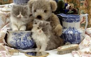 Картинка игрушка, зеркало, мишка, котята, кувшин