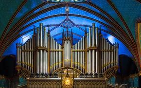 Обои орган, трубы, Канада, Собор Монреальской Богоматери