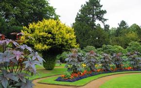Картинка зелень, деревья, цветы, дизайн, газон, дорожки, сад, Великобритания, скамейки, кусты, Wentworth Castle Gardens