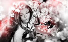 Обои цветы, девушка, волосы